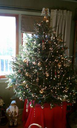 Tim-tree