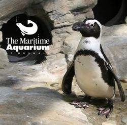 Maritime_aquarium