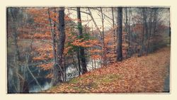 20141116_131248-EFFECTS